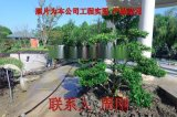 苏州专业绿化景观设计公司 私家别墅园林专业施工
