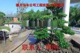 蘇州專業綠化景觀設計公司 私家別墅園林專業施工