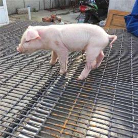 养猪轧花网 不锈钢编织筛网 铁丝编织方眼网