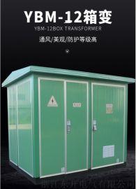 10kv欧式箱变预装式变电站YBM-12