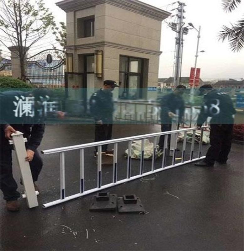山東護欄廠家批發pvc草坪護欄定製花壇花池市政綠化圍欄塑鋼欄杆