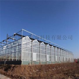 温室厂家建设阳光板温室阳光板大棚