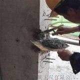 横梁, 立柱深度修复用高强修补砂浆