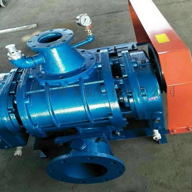 结构简单罗茨真空泵SR-T175**低厂家供应
