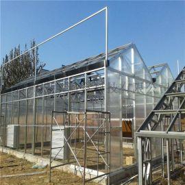 阳光板温室建设阳光板玻璃温室工程提供温室资材
