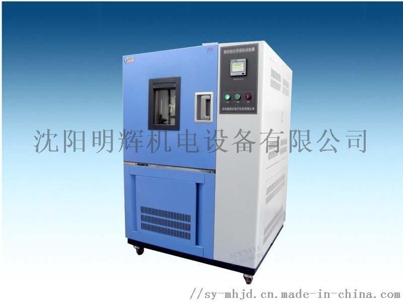 RGDS-100恒温恒湿试验箱