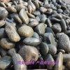 鹅卵石厂家 园林景观装饰鹅卵石 水处理鹅卵石