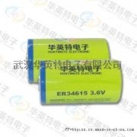 高性能无滞后智能仪表专用锂亚电池