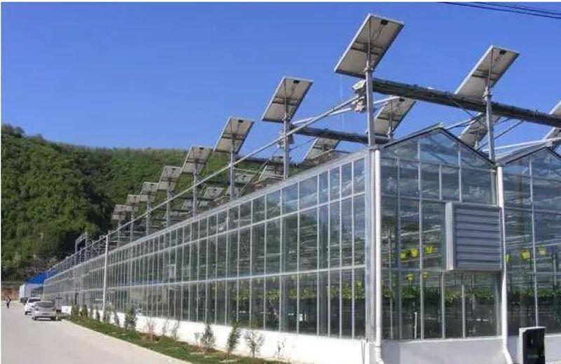 弘康溫室 光伏溫室溫室大棚 太陽能連棟溫室