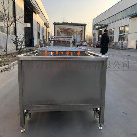 蓝莓罐头生产线 蔓越莓清洗烘干设备
