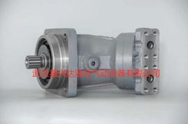 柱塞泵A2F125W6.1B5