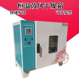 实验室电热鼓风恒温干燥箱 工业烤箱 烘箱