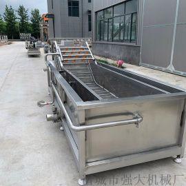 果脯大产量全自动生产线 连续式果脯加工设备