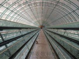 拱形养殖保温棚 养殖温室大棚骨架