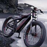 碳纖維沙灘車
