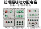 廠家定製直銷BXM(D)防爆防腐動力配電箱