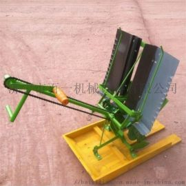 小型人工插秧机告别弯腰时代 水田水稻插苗机