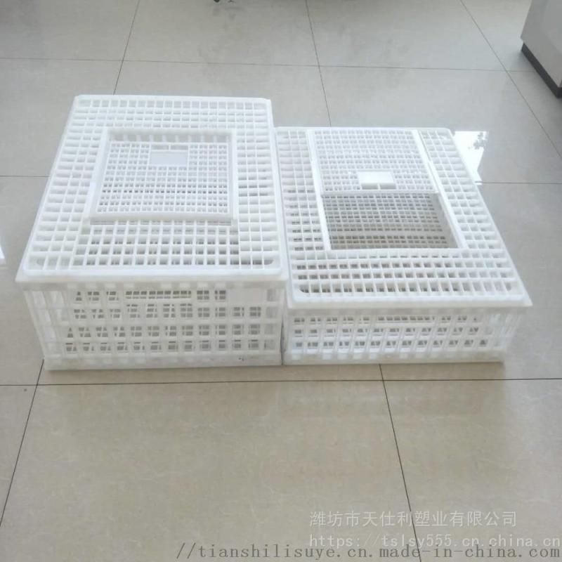 新式成鸡运输笼塑料鸡鸭运输筐成禽周转箱报价