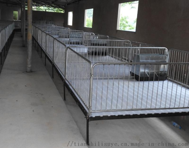 山东猪用漏粪板塑料猪漏粪板猪产床报价