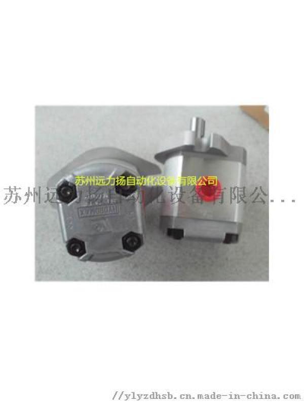 專業供應PR2-080新鴻齒輪油泵