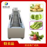 货源产地全自动气泡清洗机 菠菜蔬菜菌类清洗机