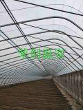 河北大棚建设 大棚钢架 温室大棚光环境调节