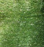 西安围挡草坪哪里有 围挡草坪