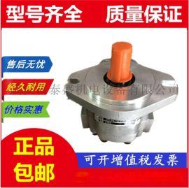 液压齿轮泵P25X305KIAB10-53**AB10-1