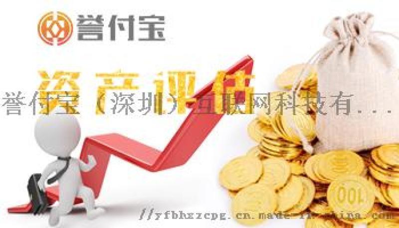 深圳无形资产评估,快速出评估报告