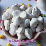 保定本格直销 白色鹅卵石 白色石子 彩色小石头