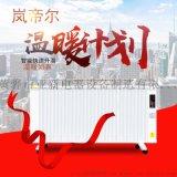遠紅外碳纖維電暖器600w