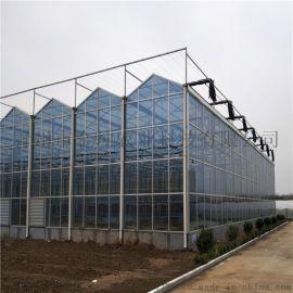 阳光板温室大棚建设 PC板温室大棚造价