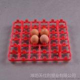 30枚塑料鸡蛋托 36枚塑料蛋托 塑料蛋托供应商