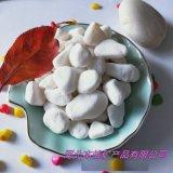 厂家直销白色洗米石 多肉植物盆栽小白石 园艺白石子