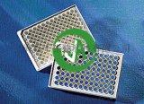 上海晶安酶标板白色底透 底透白色微孔板 四边白色底部透明96孔板 四壁白边96孔板 底透全白微孔板厂家
