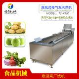 腾昇牌商用洗菜机 果蔬气泡清洗机货源(定制款)