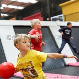 成人健身儿童蹦蹦床 大型蹦床公园淘气堡游乐场设备