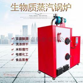 生物质颗粒锅炉煮豆浆米粉烘干小型蒸汽发生器