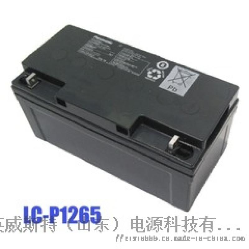 松下EPS/UPS蓄電池 免維護鉛酸蓄電池65Ah