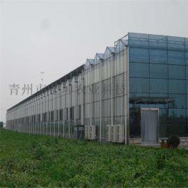 智能温室大棚专业设计 智能温室大棚工程
