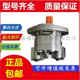 液壓齒輪泵GPC4-40-40-1E2F4-30-R