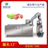 大型水果蔬菜清洗榨汁机生产线定制