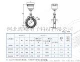 山東濱州市海峯卡片式超聲波水錶廠家
