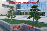 苏州公司厂区绿化 小区绿化工程 工厂绿化设计施工