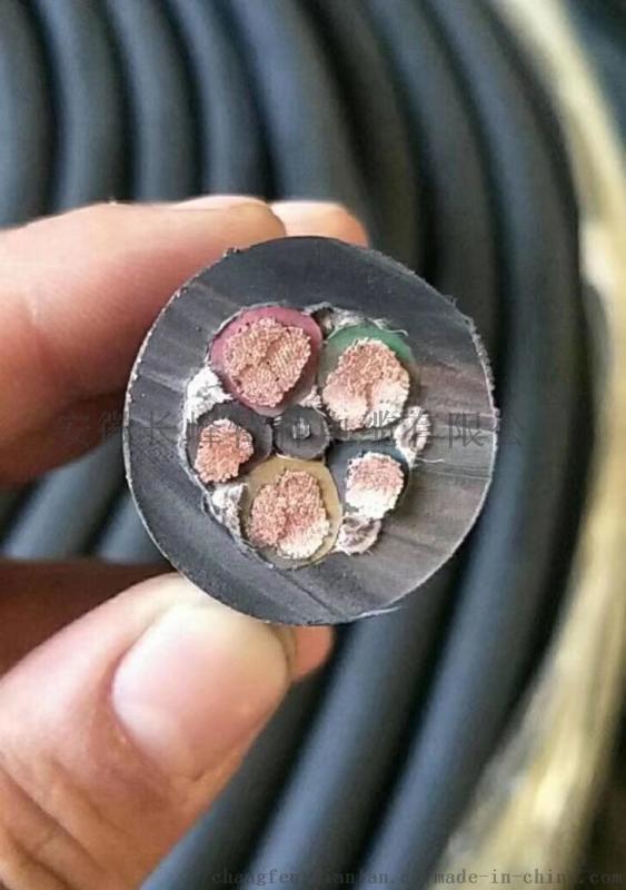 长峰特种电缆BPTTYJVP2变频器用回路电缆