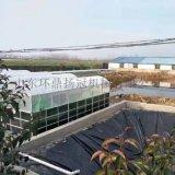 新型双膜气柜纳米气囊养殖场用太阳能沼气池