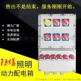 【隆業優質產品】【防爆配電裝置】