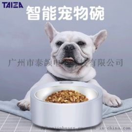 宠物喂食器 宠物自动喂食碗 宠物秤 厂家直批