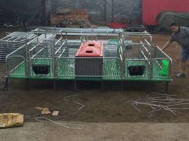 2.4*1.9欧式热浸锌母猪产床养猪设备直销