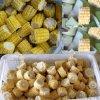 速冻玉米切段机,冷冻玉米切段机,香糯玉米切段机